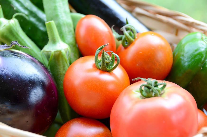 2 - 夏野菜で夏を乗り切る!美容にも健康にも良い旬野菜トマト・ズッキーニ・オクラの簡単レシピ