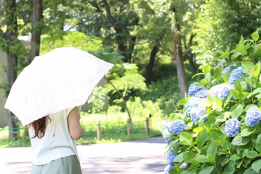 1 - 夏野菜で夏を乗り切る!美容にも健康にも良い旬野菜トマト・ズッキーニ・オクラの簡単レシピ